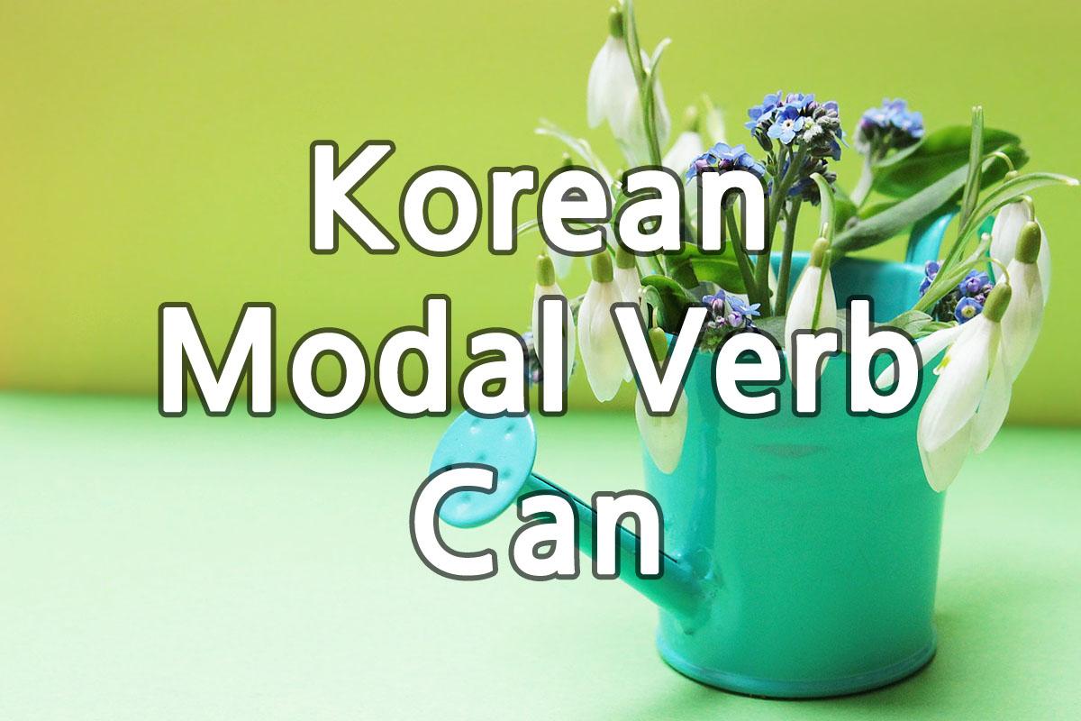 Korean Modal Verb Can img