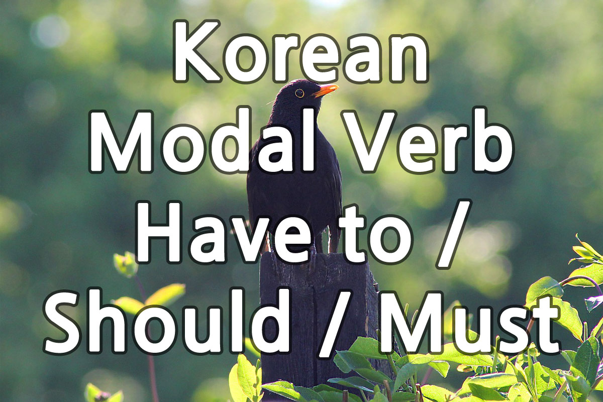 Korean Modal Verb Have to Should Must img
