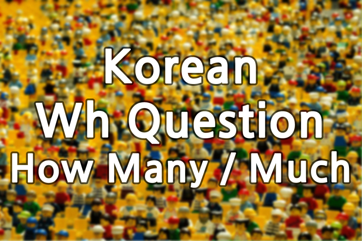 Korean How Many Much Questions img