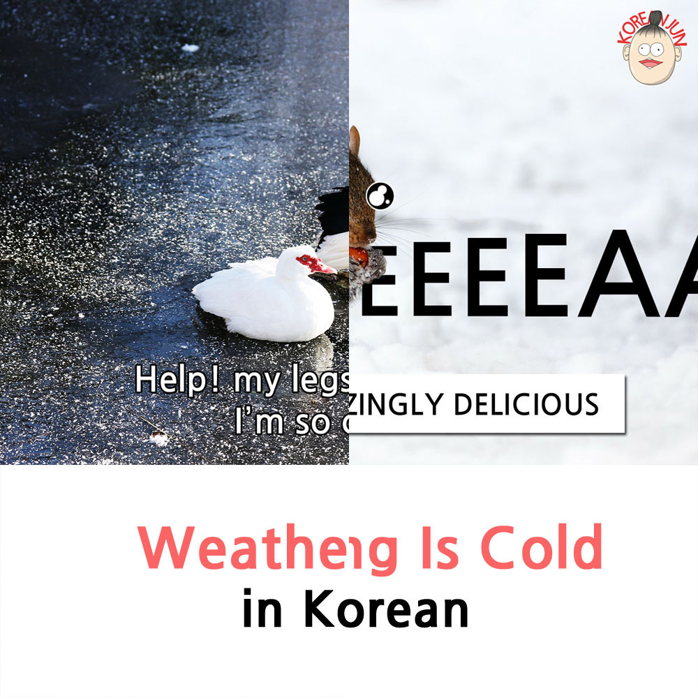 It's Cold in Korean 1