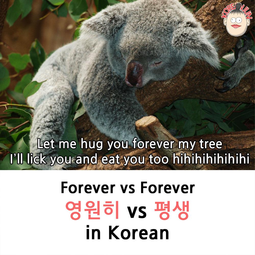 영원히 vs 평생 in Korean 1