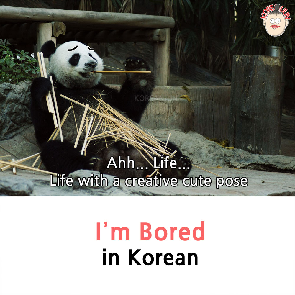 I'm Bored in Korean 1 img