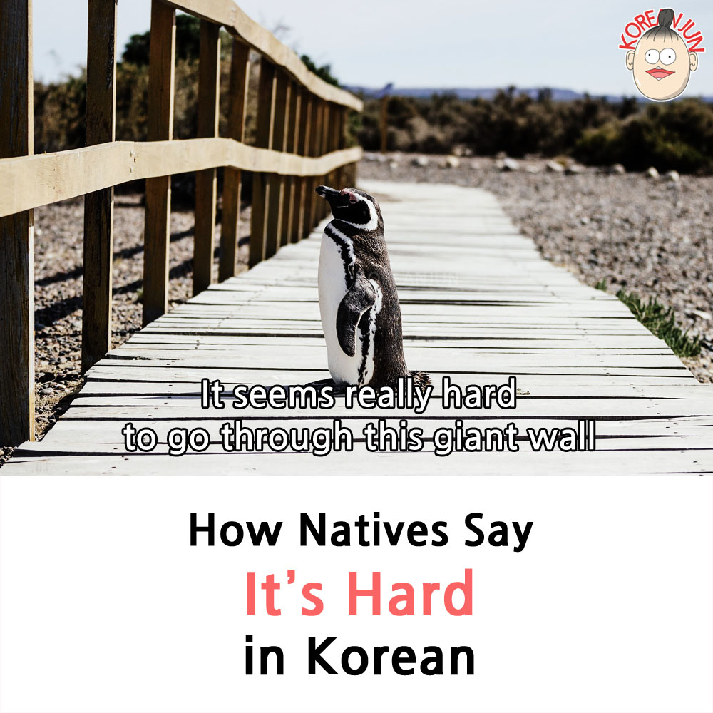 It's Hard in Korean 1