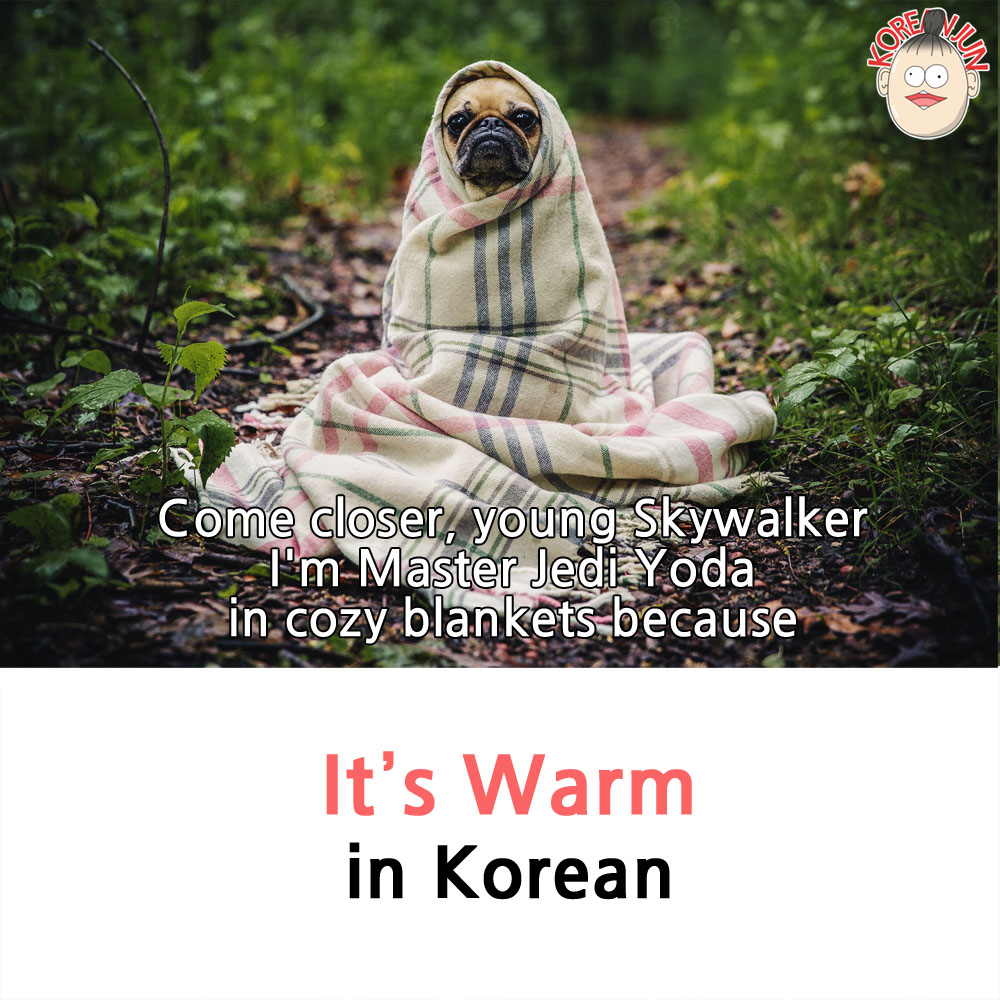 It's Warm in Korean 1-new
