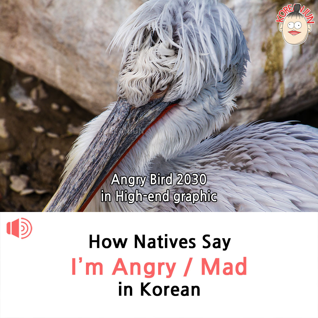 I'm Angry Mad in Korean 1