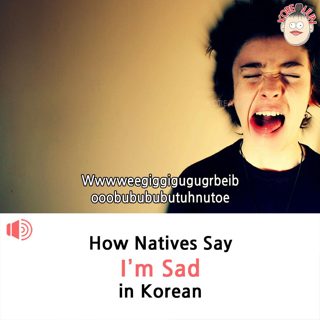 I'm Sad in Korean 1