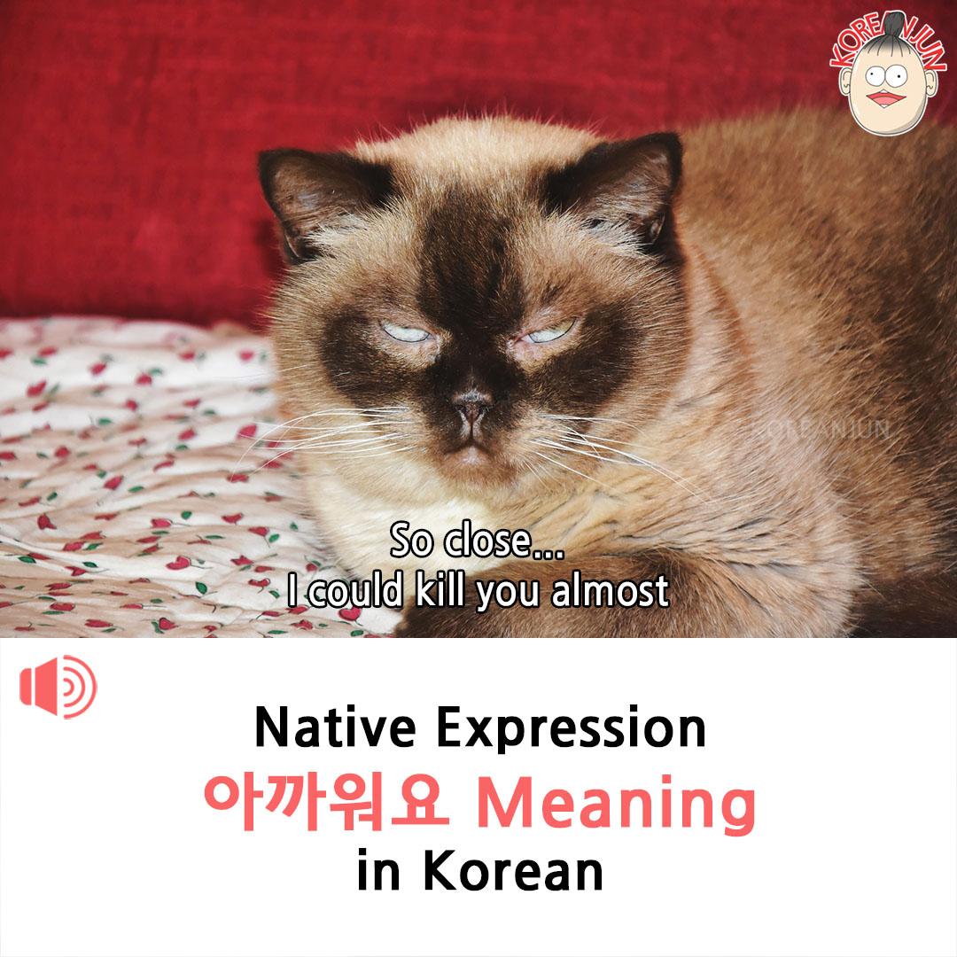 Akkapneyo Meaning in Korean 1