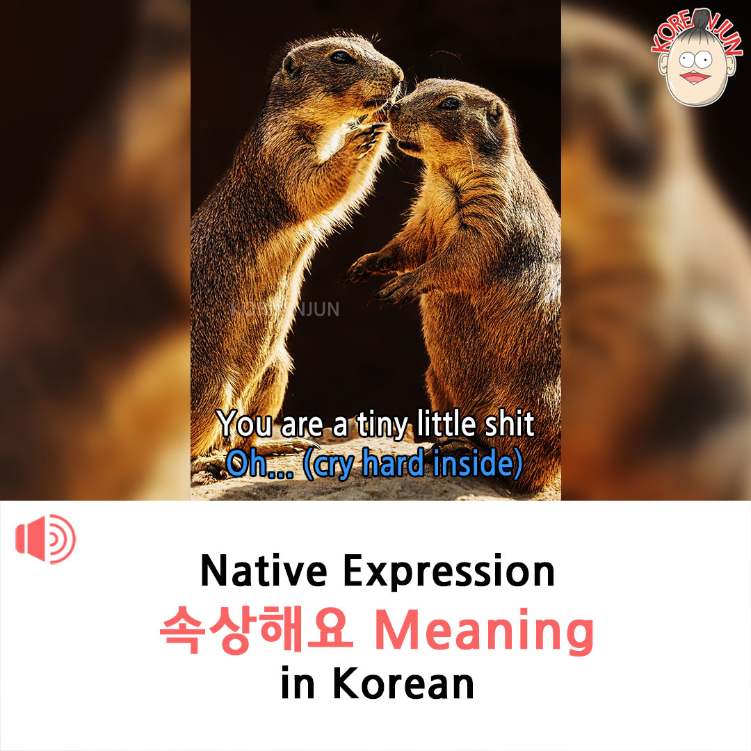 Soksangheyo Meaning in Korean 1