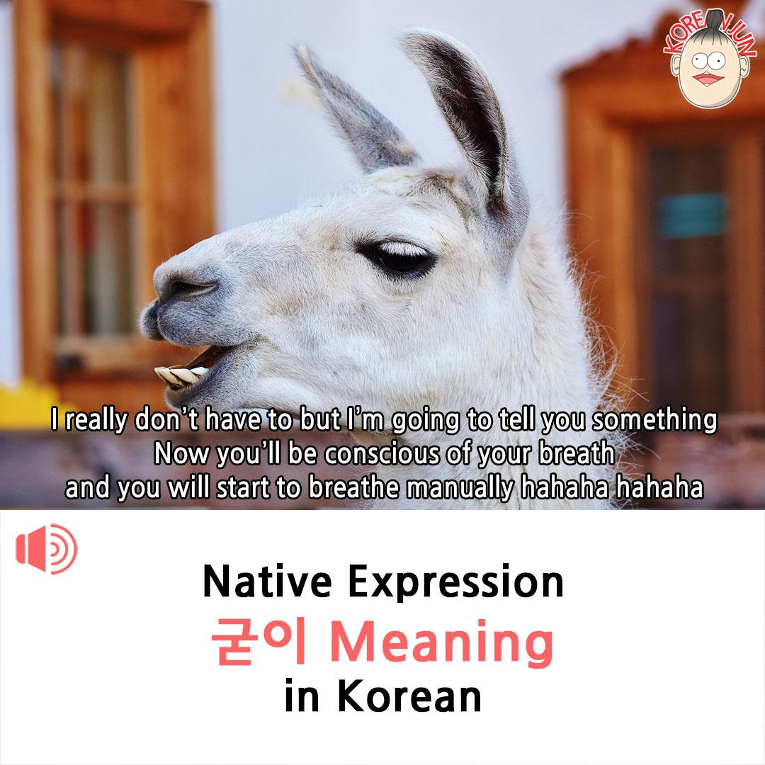 Guji Meaning in Korean 1